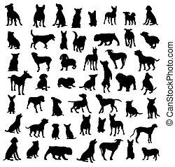 silhouettes, chien, activité