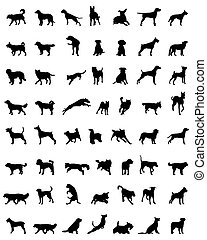silhouettes, chiens