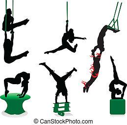 silhouettes, cirque, interprètes