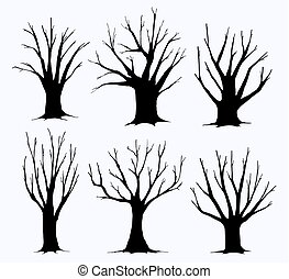 silhouettes, collection, arbres