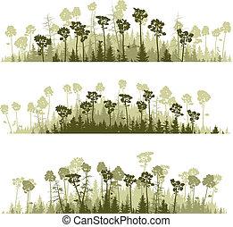 Silhouettes coniferous wood. - Set vector horizontal lines...