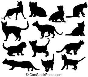 silhouettes, de, chats, 2