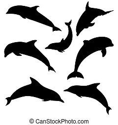 silhouettes, delfin