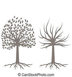 silhouettes, deux, arbres