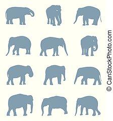 silhouettes, elephants.