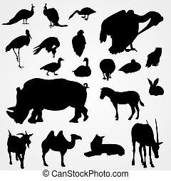 silhouettes, ensemble, animaux, zoo