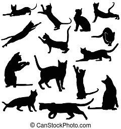 silhouettes, ensemble, chat noir