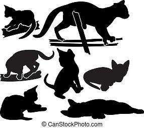 silhouettes, ensemble, chaton