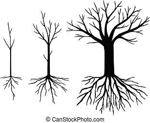 silhouettes, ensemble, feuilles, arbres, sans