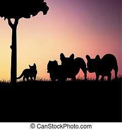silhouettes, fond, chiens, chaton