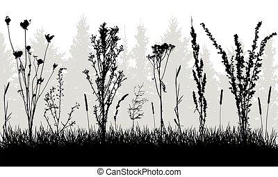 silhouettes., forêt, vecteur, illustration., herbe, mauvaises herbes, fond