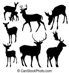 silhouettes, hjort