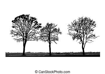 silhouettes, isolé, arbre, blanc, arrière-plan.
