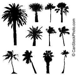 silhouettes., klippe, samling, vektor, håndflade træ, let, ...