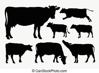 silhouettes, koe, dier
