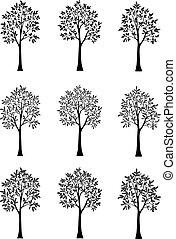 silhouettes, noir, arbres