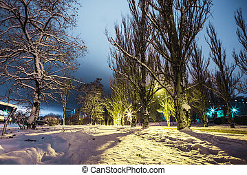 silhouettes of a couple on  snowy park in the night lights