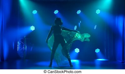 Silhouettes of a young attractive brunette who dances and spins against the background of bright dynamic lights. Theatrical performance. Slow motion