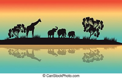 Silhouettes of african animals in morning