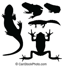 Silhouettes of amphibians, vector