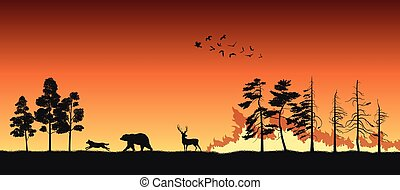 Silhouettes of animals on wildfire background