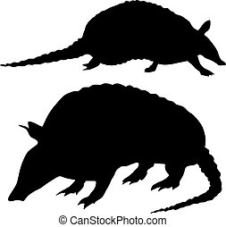 Silhouettes of armadillo