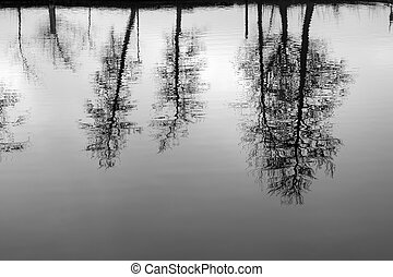 Silhouettes of bare trees reflecting in calm water in the fall.