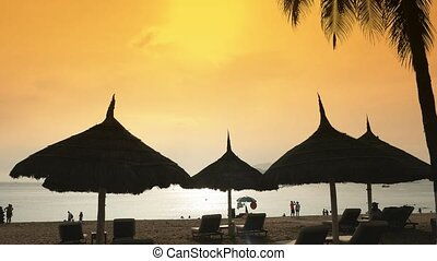 Silhouettes of beach chairs in the evening sky in Vietnam with palm trees. View of umbrellas from a creek on the beach during sunset.