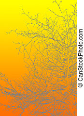 Silhouettes of branches in summer.