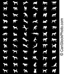 silhouettes  of dogs  background