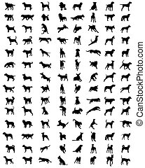 silhouettes of dogs
