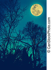 Silhouettes of dry tree against night sky and bright moon. Outdoor. Cross process and vintage tone effect.