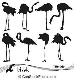 Silhouettes of flamingos