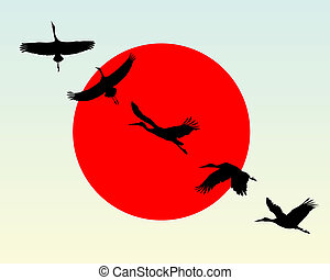 Silhouettes of flying cranes