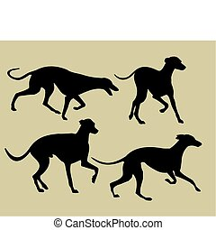 silhouettes of greyhounds