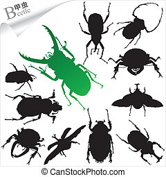 Silhouettes of insect - beetles