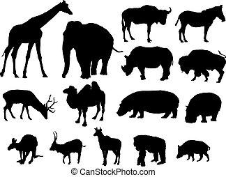 large herbivores - silhouettes of large herbivores
