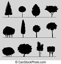 Silhouettes of plants.