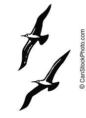 silhouettes of the sea birds