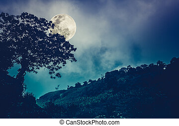 Silhouettes of tree against night sky and bright moon. Outdoor. Cross process and vintage tone effect.