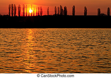 silhouettes of trees and the sun rising Orange Lake