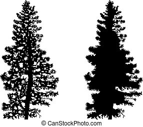 Silhouettes of  trees.