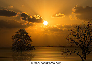 Silhouettes of trees with sunset sky on the lake in south of Thailand.