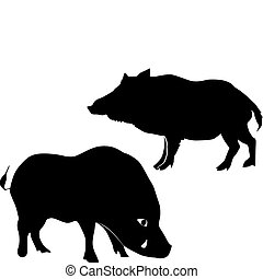 silhouettes of wild boars