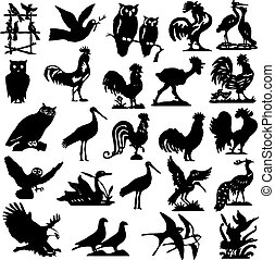 silhouettes, oiseau, illustration, collection