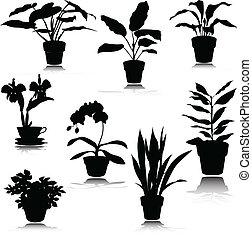 silhouettes, potted, vecteur, fleur