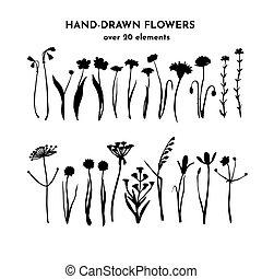 silhouettes., sauvage, plants., encre, set., main, vecteur, drawing., dessiné, illustration, floral, fleurs, isolé