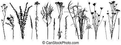 silhouettes., sauvage, usines, mauvaises herbes, vecteur, illustration., ensemble