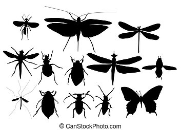 Silhouettes Set of Beetles, Dragonflies and Butterflies