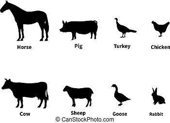Silhouettes set of livestock